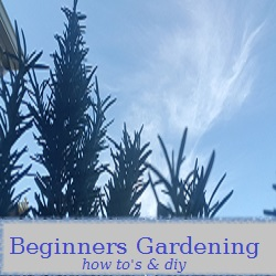 Home Page Clickable Link -Beginners Gardening