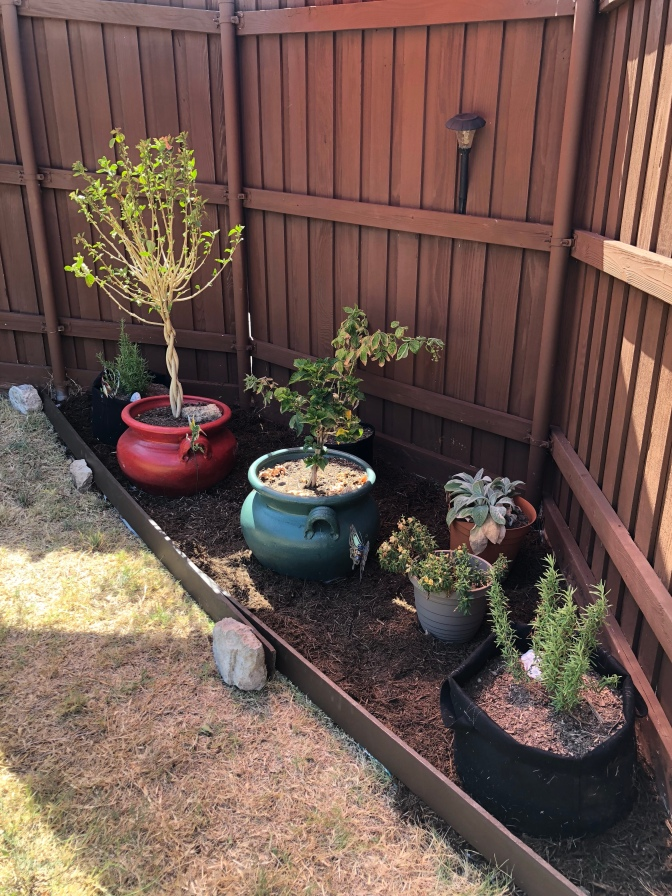 DIY Garden Project Using Things Around Your Home